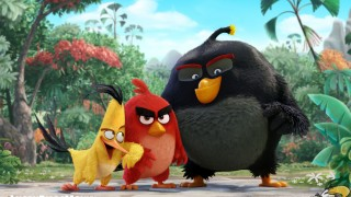 Angry Birds (2016) Full Movie - HD 1080p BluRay