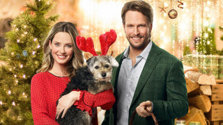 Picture Perfect Royal Christmas (2020) Full Movie - HD 720p